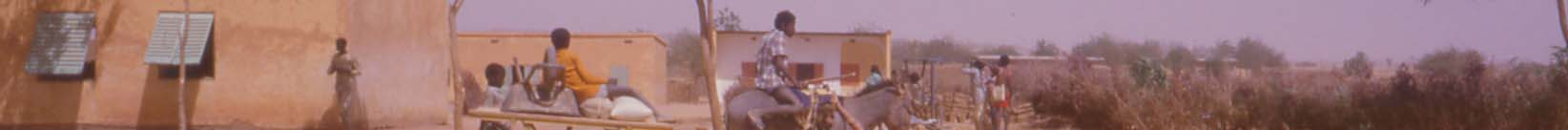 Boys on a donkey cart in a Zarma village in western Niger